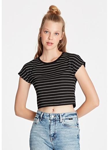 Mavi Kadın  Çizgili  Crop  Tişört 168382-900 Siyah